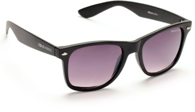 Danny Daze D-1704-C3 Wayfarer Sunglasses(Black)