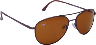 Floyd 121043_BRN_BRN Aviator Sunglasses(Brown)