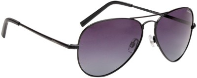 Polaroid PLD1017/S 003WJ Aviator Sunglasses(Grey)