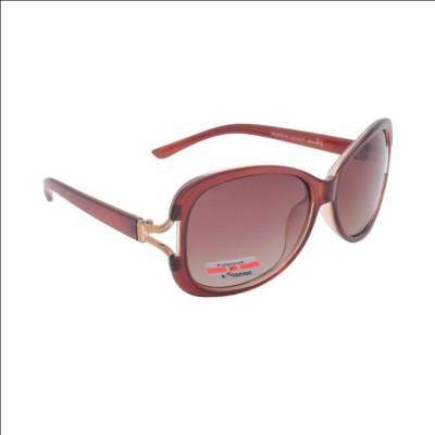 Volcano Polarised Cat-eye Sunglasses