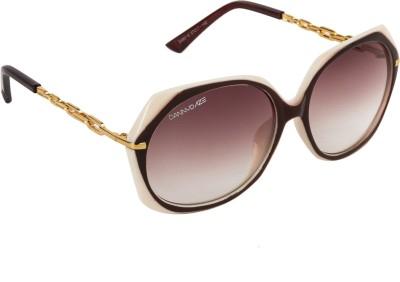 Danny Daze D-2532-C3 Round Sunglasses(Brown)