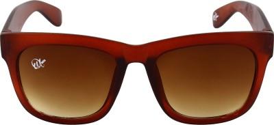 Omnesta 4brown Wayfarer Sunglasses