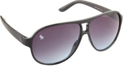 Royal County Of Berkshire Polo Club POCA-19 Over-sized Sunglasses