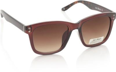 Joe Black JB-597-C2 Wayfarer Sunglasses(Brown)