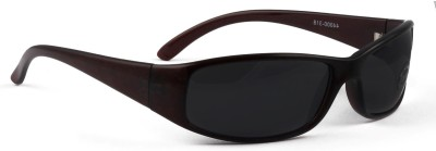 VisionSpring Oval Sunglasses