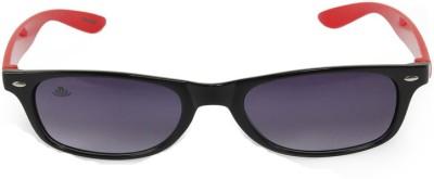 ABLOOM Wayfarer Sunglasses