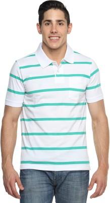 Tempt Striped Men's Polo Neck Green T-Shirt