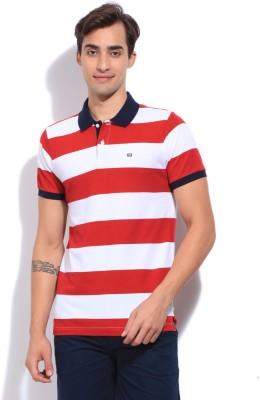 Arrow Sports Striped Men's Polo White, Red T-Shirt
