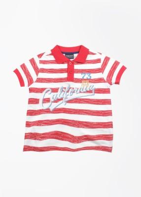 Cherokee Kids Striped Boy's Polo White, Red T-Shirt