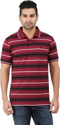 6P6 Striped Men's Polo Neck Maroon, Black, White T-Shirt