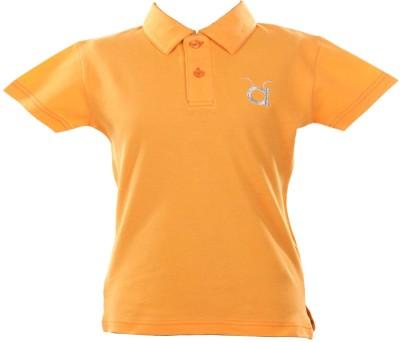 Anthill Solid Boy's Flap Collar Neck Orange T-Shirt
