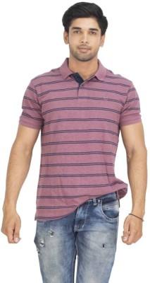 Petroficio Striped Men's Polo Neck Maroon T-Shirt