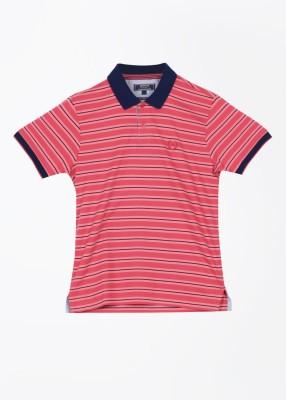 Arrow Sport Striped Men's Polo T-Shirt