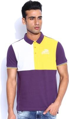 HRX Solid Men's Polo Neck Purple T-Shirt