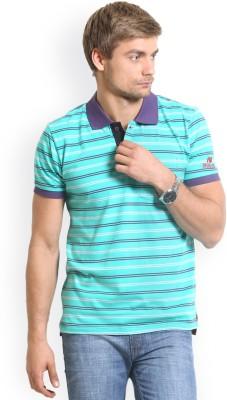 HW Striped Men,s Polo Neck Green T-Shirt