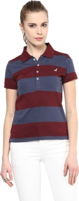American Crew Striped Women's Polo Neck Blue, Maroon T-Shirt