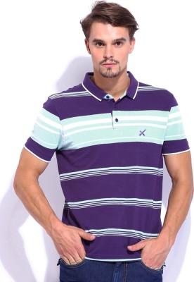HRX Striped Men's Polo Purple T-Shirt