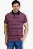 Taanz Striped Men's Polo Neck Red T-Shir...