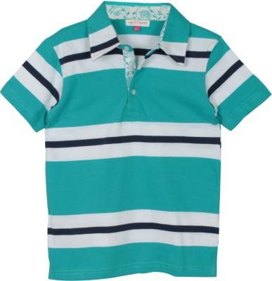 My Little Lambs Striped Boy's Polo Neck Dark Green T-Shirt