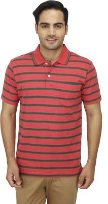Zista Striped Men's Polo Multicolor T-Shirt