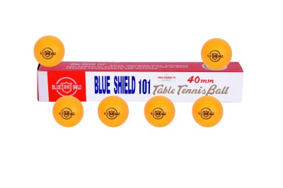 SRC Stationary Indoor Table Tennis Table