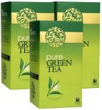 LaPlant Plain Green Tea (240 g, Box)