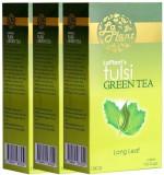 LaPlant Tulsi Green Tea (300 g, Box)