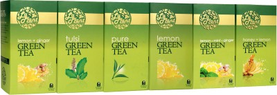 LaPlant Lemon, Mint, Ginger, Honey Tea Green Tea
