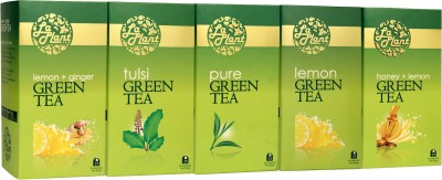 LaPlant Lemon, Ginger, Honey Tea Green Tea