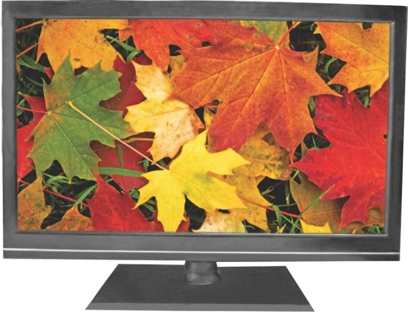 Salora 59cm (23.22) HD Ready LED TV(SLV 2401, 1 x HDMI, 1 x USB)
