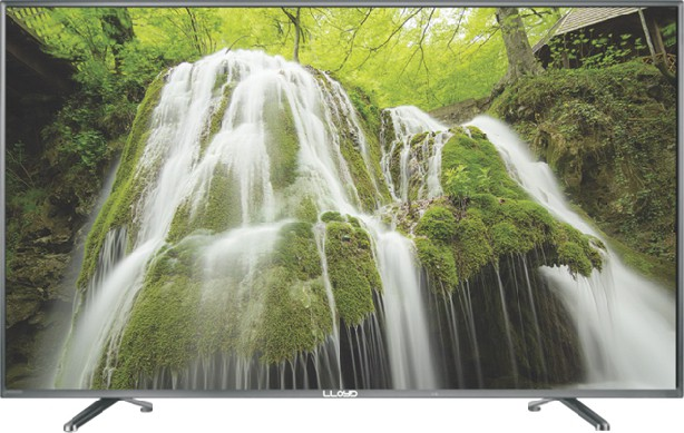 Lloyd 60.96cm (24) HD Ready LED TV(L24ND, 1 x HDMI, 1 x USB)