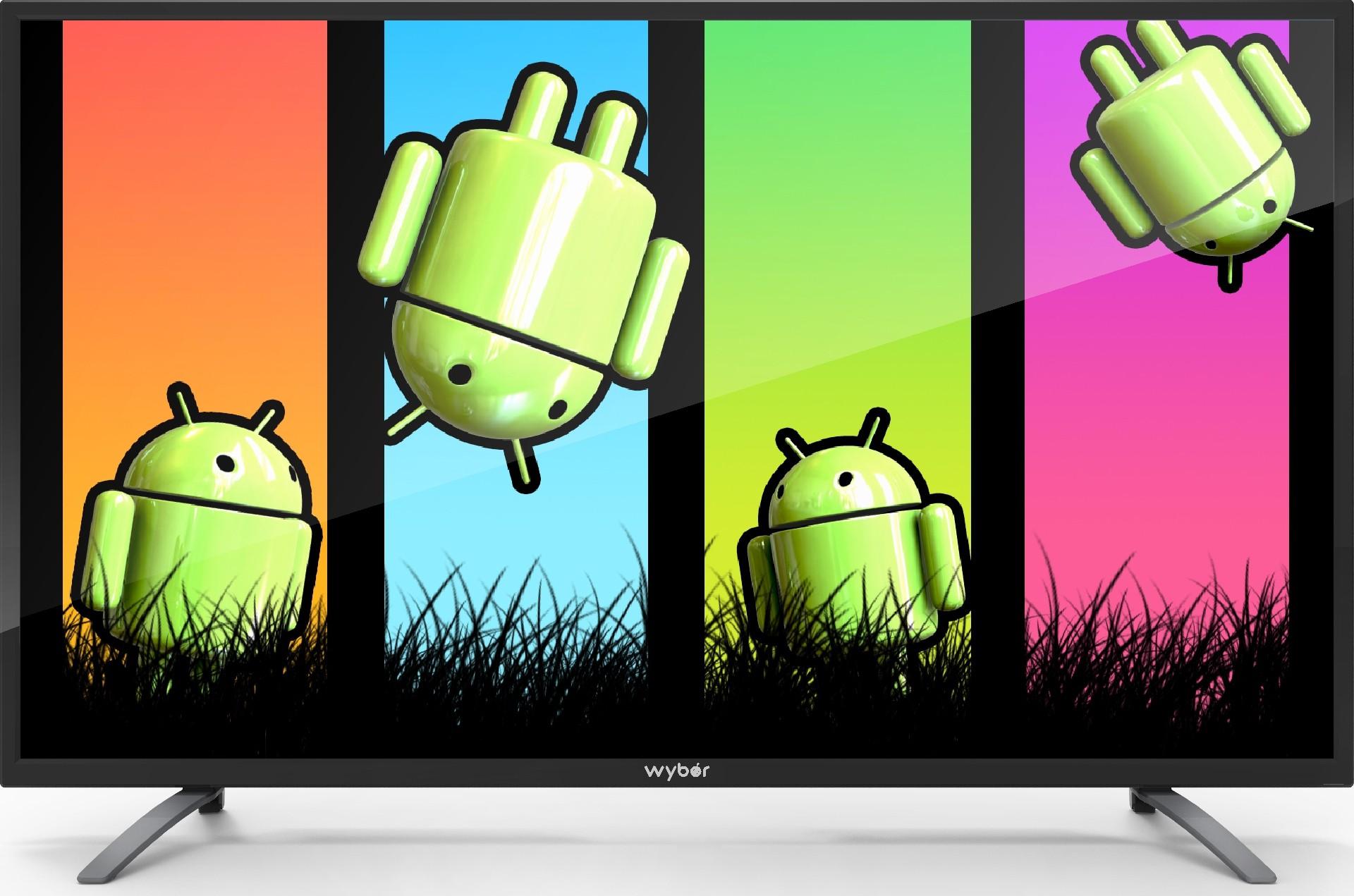 WYBOR 50MS16 48 Inches Full HD LED TV
