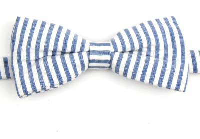 Take A Bow Summer Striped Overlap Bow Tie Striped Men's Tie