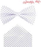 Modishera Polka Print Tie