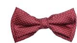 Alvaro Polka Print Men's Tie