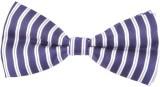 Modishera Striped Tie