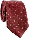 Cazzano Graphic Print Men's Tie