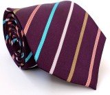 Willian Striped Men's Tie