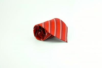 TheTieHub Printed Men's Tie