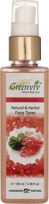 Greenviv Natural & Herbal Toner - Rose & Geranium