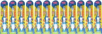 Ajanta Chipkoo Toothbrush Pack of 12 pieces