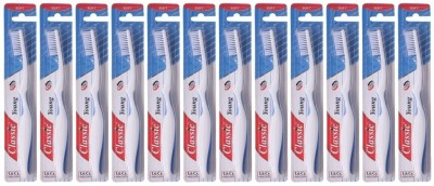 Classic Young Soft Toothbrush (Pack of 12 )