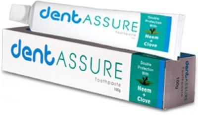 Vestige Dentassure Toothpaste Mint Toothpaste