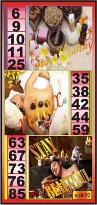 CREATIVE DESIGN housie ticket Toy Accessory(tambola board Multicolor)