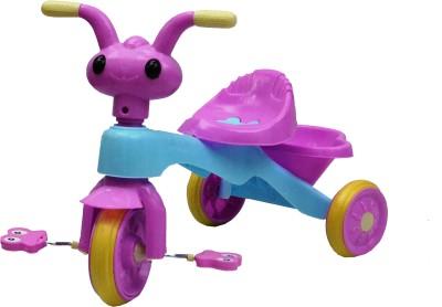 Taaza Garam Kids Bike Trike Bicycle Tricycle Toddler Children's 3 Wheel Ride On Toy Tricycle