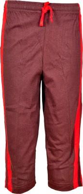 Gee & Bee Solid Boy's Brown Track Pants