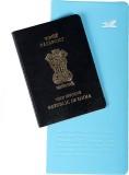 Goblin PVC Passport Holder Big (Blue)