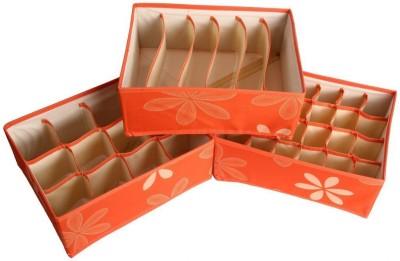 Packnbuy Set of 3 Innerwear Organizer