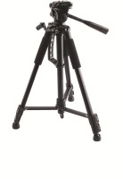 Cellbazaar Good Quality Stedy PTR-560 6 Kg Capacity With Extra Quick Release Plate Tripod(Black, Supports Up to 6000 g)