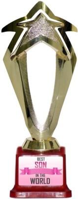 TEDPLUS BEST SON IN THE WORLD Trophy